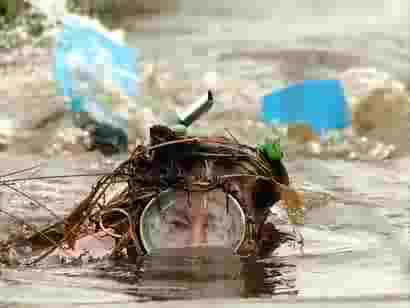 A competitor takes part in the 2005 Bog Snorkelling Championship in Llanwrtyd Wells in mid-Wales /Empics